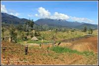 Ilaga Puncak Papua