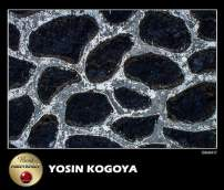 Frame Dari Gallery Photography Indonesia Kategori Human Abstract